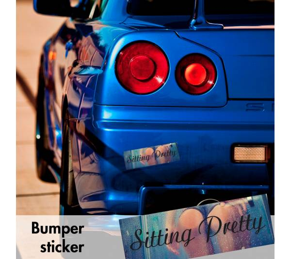 Sitting Pretty Sexy Fitment Bumper Printed Sticker Box Slap JDM Stance Event Show Low Car Vinyl Decal