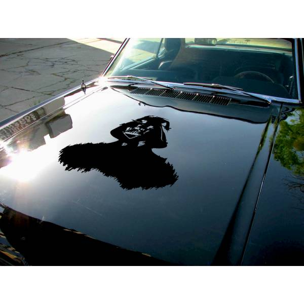 Hood Darth v2 Helmet Galactic Empire Sith Dark Side Force Bad Evil Luke Skywalker Car Vinyl Sticker Decal>