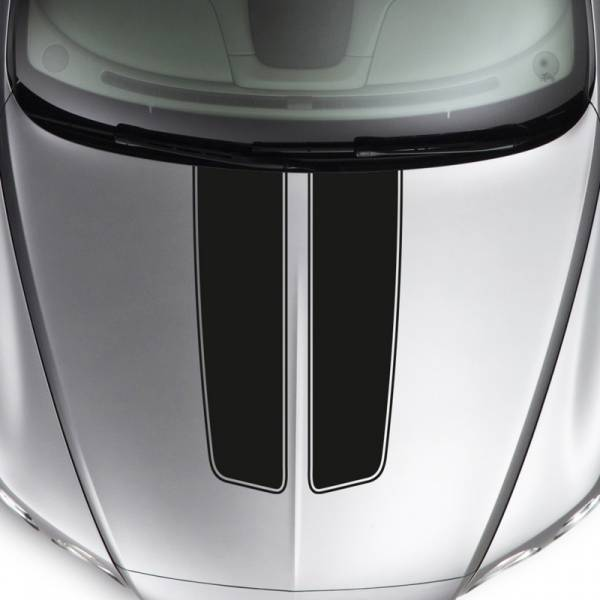 Hood Dual Stripes Sport Tribal Racing Race Car Truck Vinyl Sticker Decal>