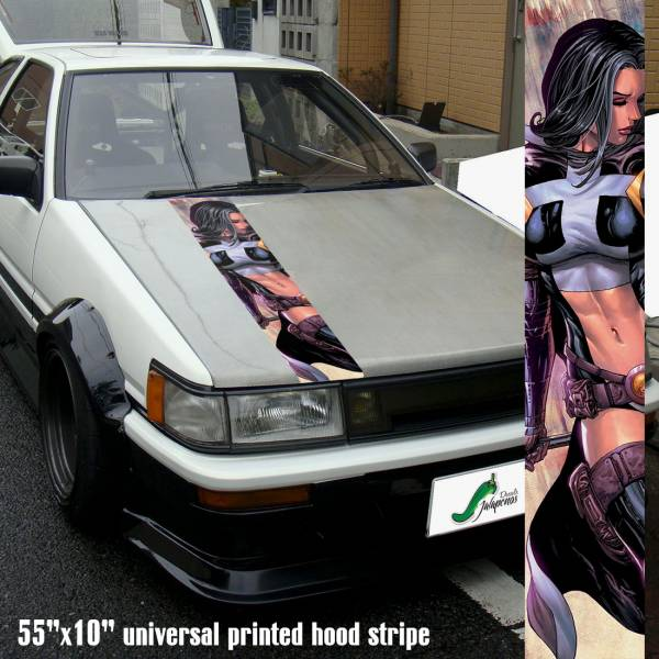 "55"" Hood Printed Stripe Huntress Sexy Girl DC Comics Batman Golden Age Car Vinyl Sticker Decal"