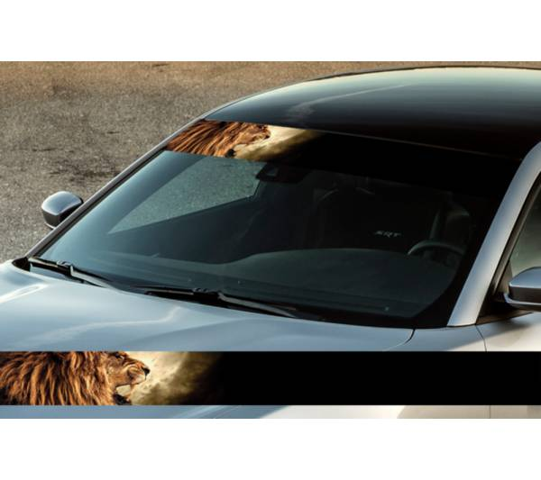 "60"" Lion v1 Scream King Wild Printed Windshield Banner Wrap Vinyl Sticker Car Truck"